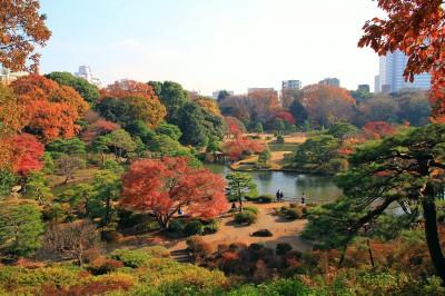 Bunkyo_Rikugien_Panoramic_View_In_Late_Autumn_1
