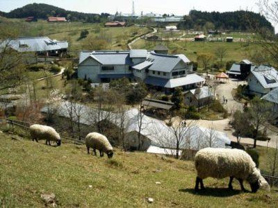 三瀬ルベール牧場どんぐり村