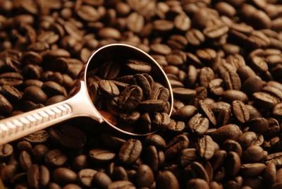 古いコーヒー豆の活用法